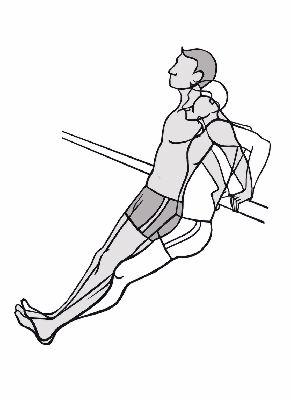 Schultergürtel